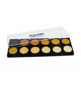 پالت فوندیشن 12 رنگ آیوزین Ayozin Professional make-up